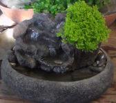 fontana-izvor